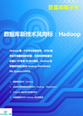 Hadoop技术